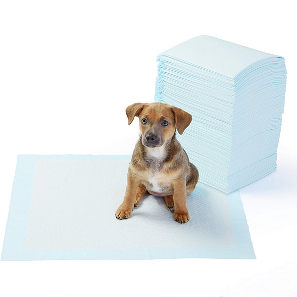 AmazonBasics Dog and Puppy Training Pads