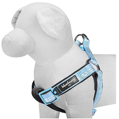 Blueberry Pet Colors Reflective Harness