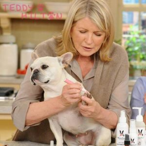 Frenchie Pedicure